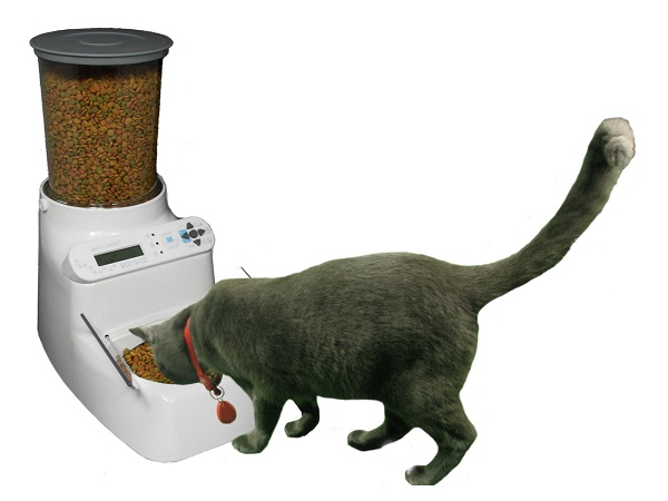what wifi need food controled for automatic feeder dishes operated feeders water easy cats smart with dry dispenser pets cat healthy
