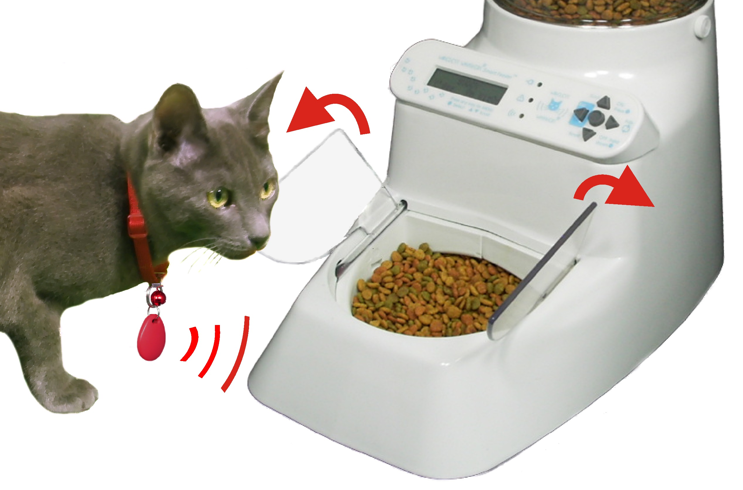 Amazing Cat Feeding Station Automatic Pet Feeder